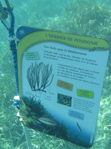 eco friendly HPL marine signage using ecoDURA