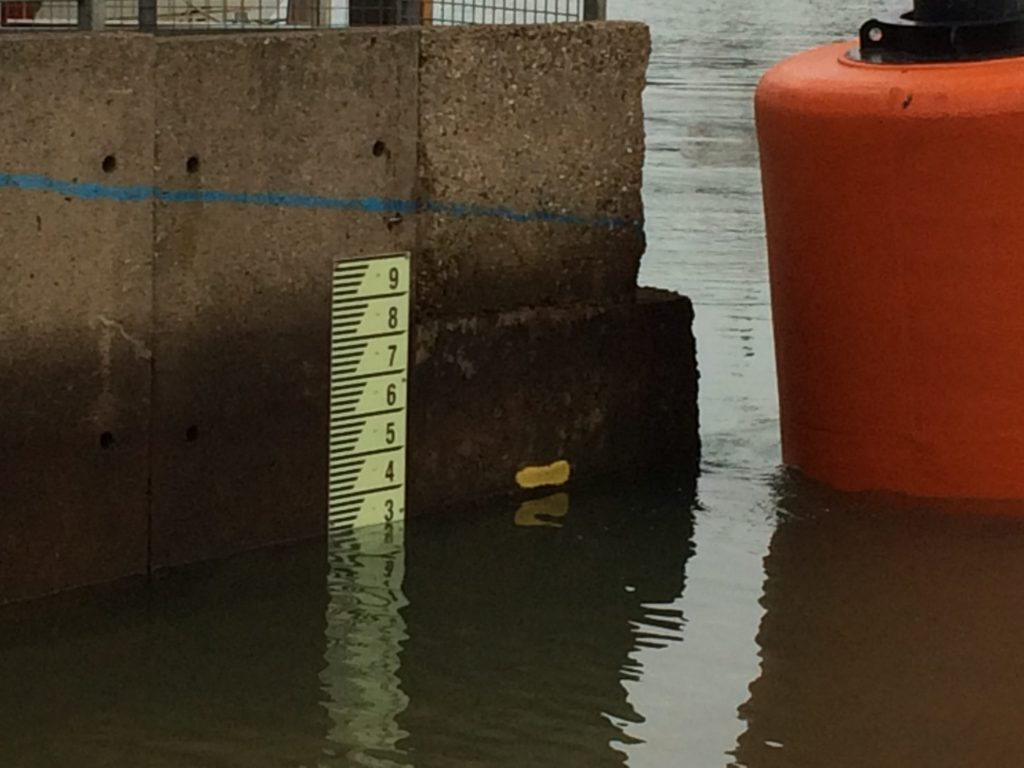 primaDURA Photoluminescent Depth Gauge Board at Cowes Harbour